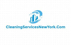 cleaning services new york domain