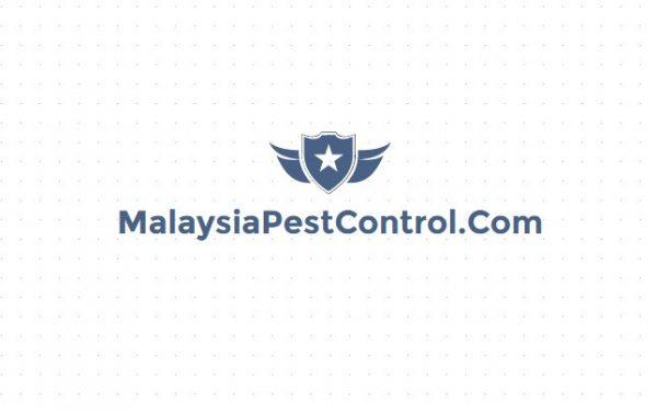 malaysia pest control domain name