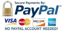 secure paypal domain payment